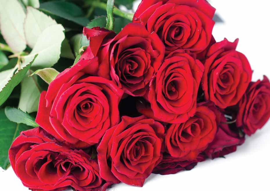 Number Of Roses Signify When You Are Gifting Your Wife