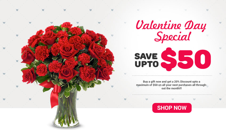 Valentine day Special Save Upto $50  -- buy a gift  now and get a 20% discount upto a maximum of $50 on all your next purches all through  out of month!!!